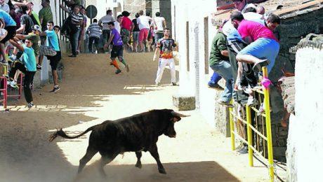 Fiestas Bermillo de Sayago